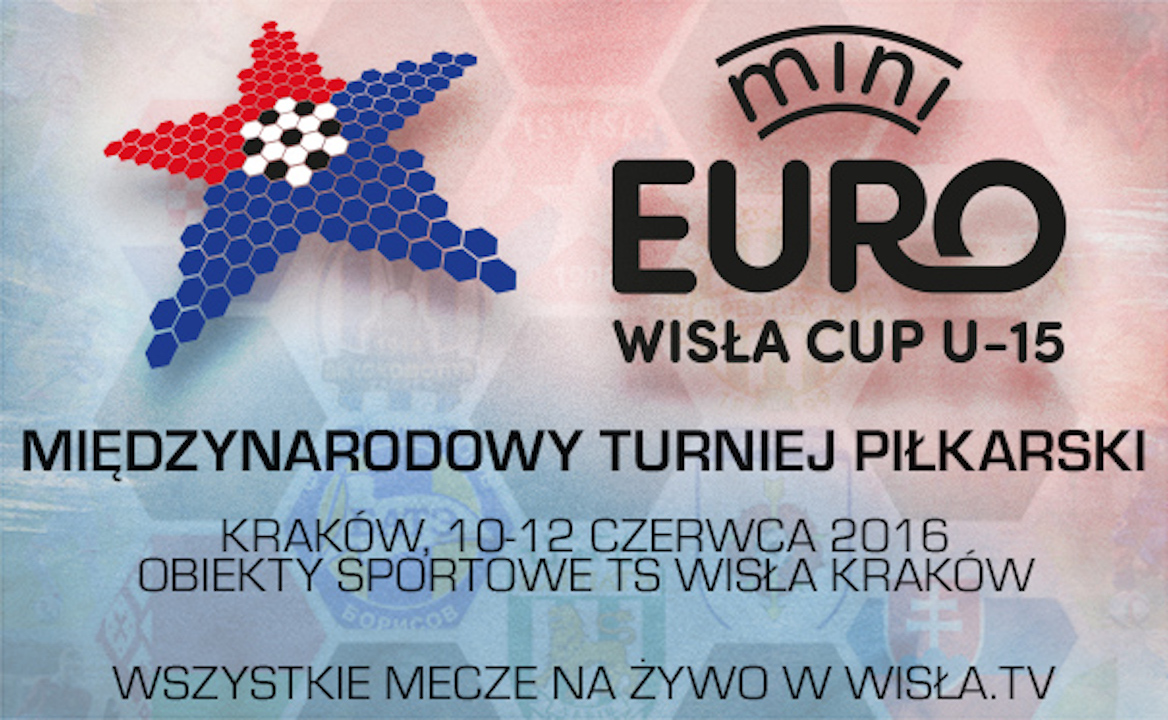 wisla cup